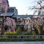 京都の繁華街情報